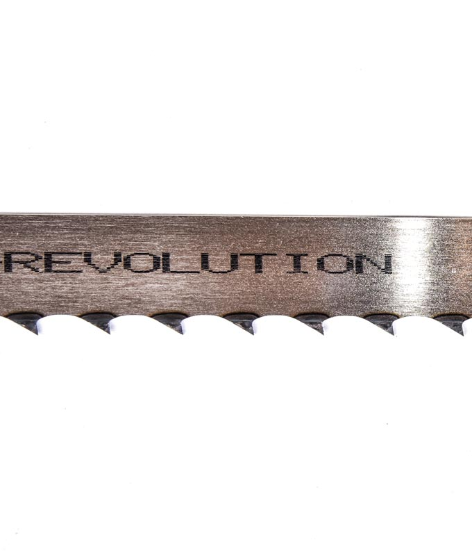 panza-panglica-revolution